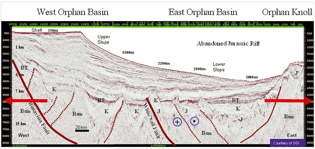 Structural Setting And Petroleum Potential Of The Orphan Basin