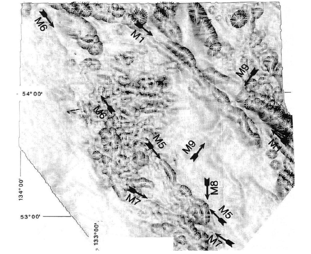 Fig. 08