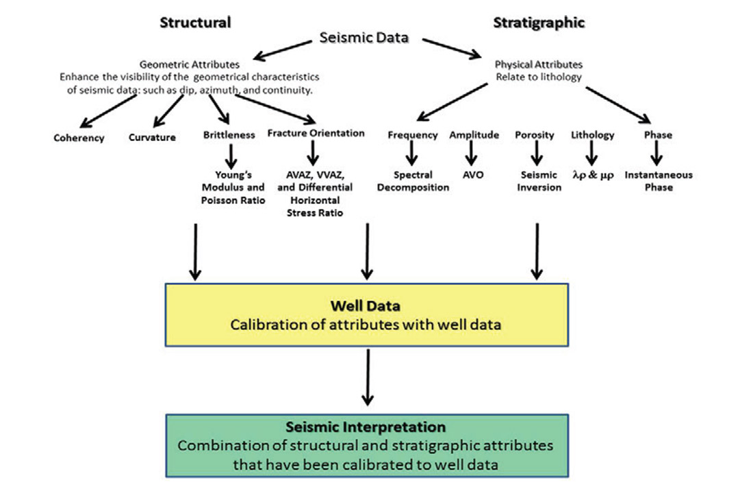 Chasing Density An Introduction To Seismic Acquisition Processing Interpreting Schematics And Diagrams A Schematic Showing How We Use Myriad Of Structural Stratigraphic Attributes Other Important Data Available Incorporate Into This